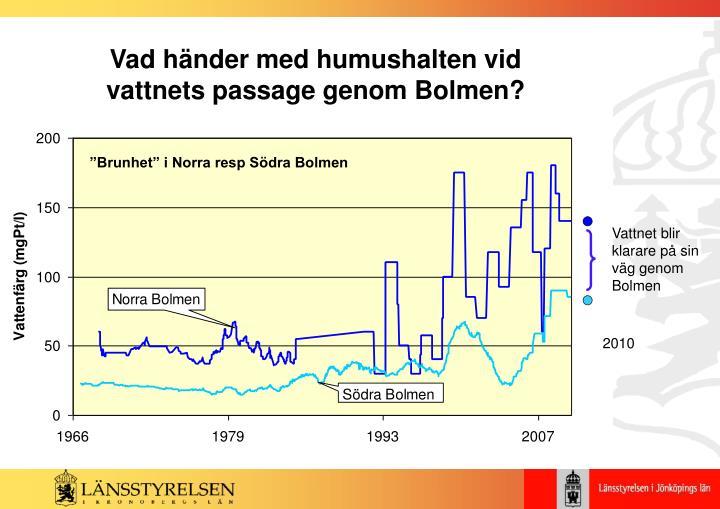 Vad händer med humushalten vid vattnets passage genom Bolmen?