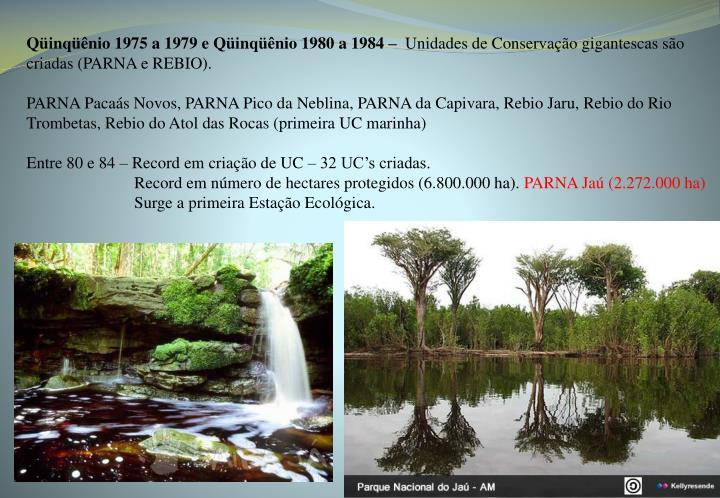 Qüinqüênio 1975 a 1979 e Qüinqüênio 1980 a 1984 –