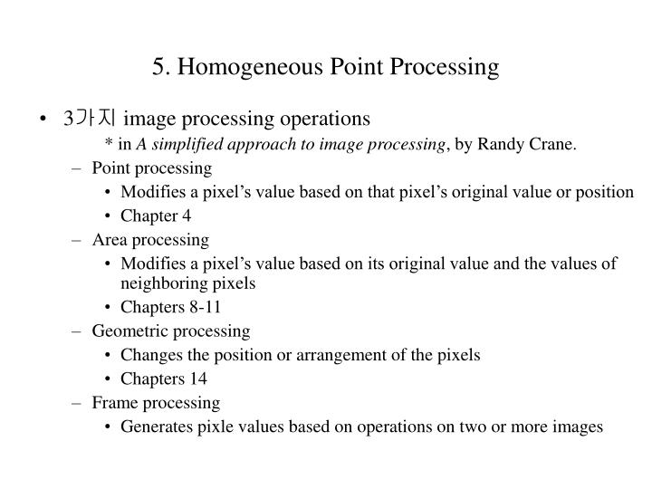 5 homogeneous point processing