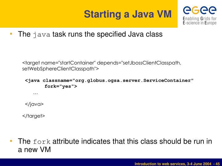 Starting a Java VM