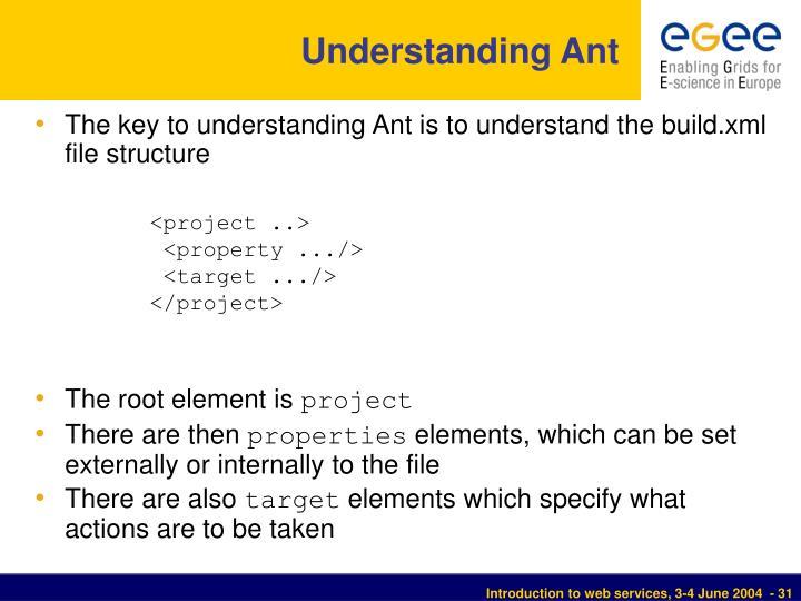 Understanding Ant