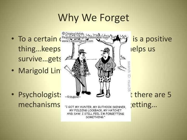 Why We Forget