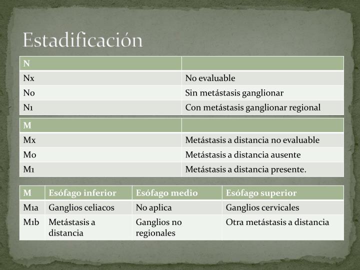 Estadificación