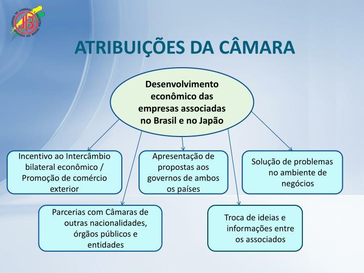 ATRIBUIÇÕES DA CÂMARA