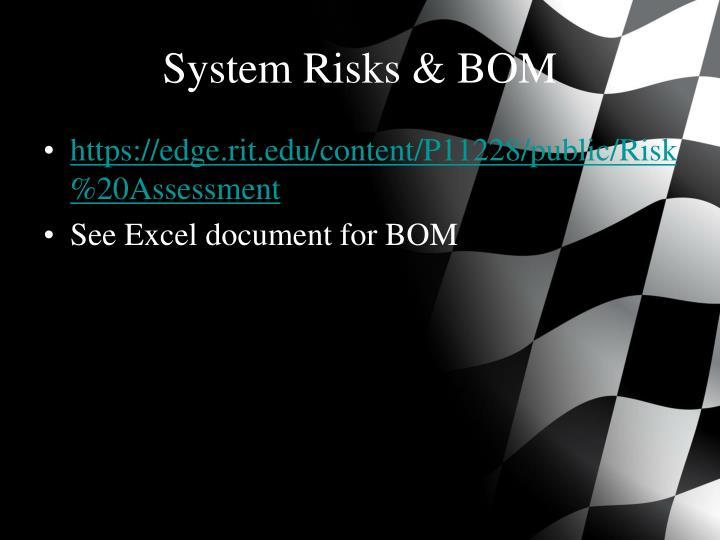 System Risks & BOM