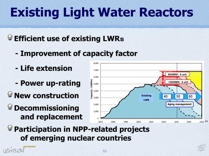 Existing Light Water Reactors