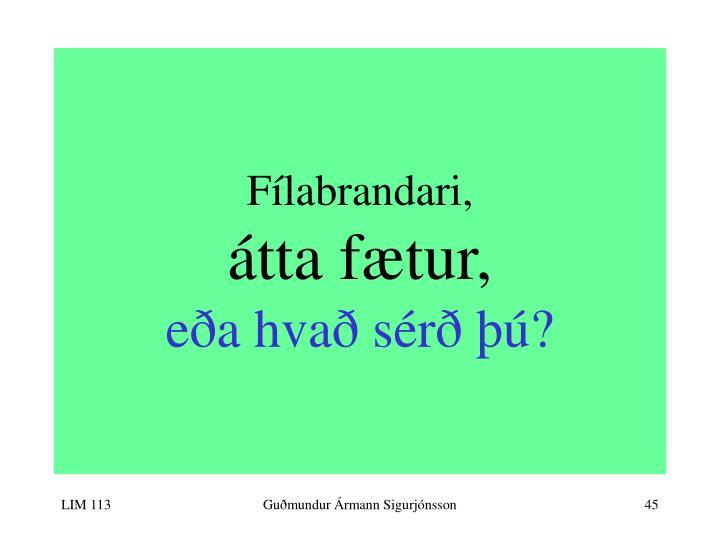 Fílabrandari,
