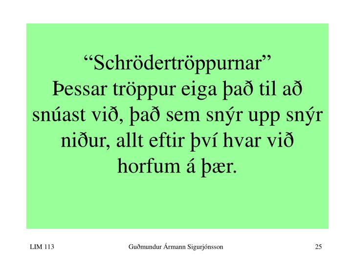 """""""Schrödertröppurnar"""""""