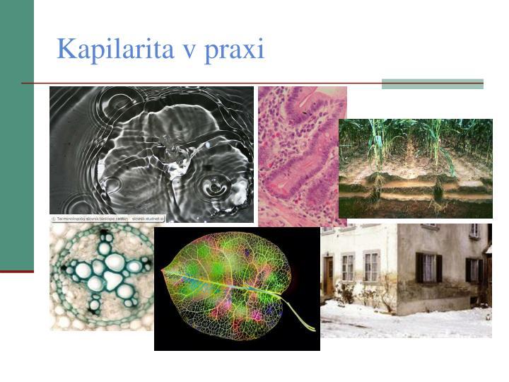 Kapilarita v praxi
