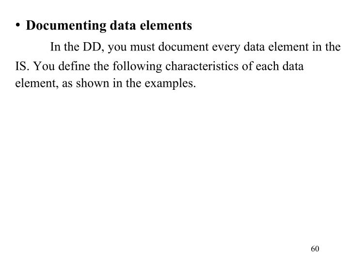 Documenting data elements