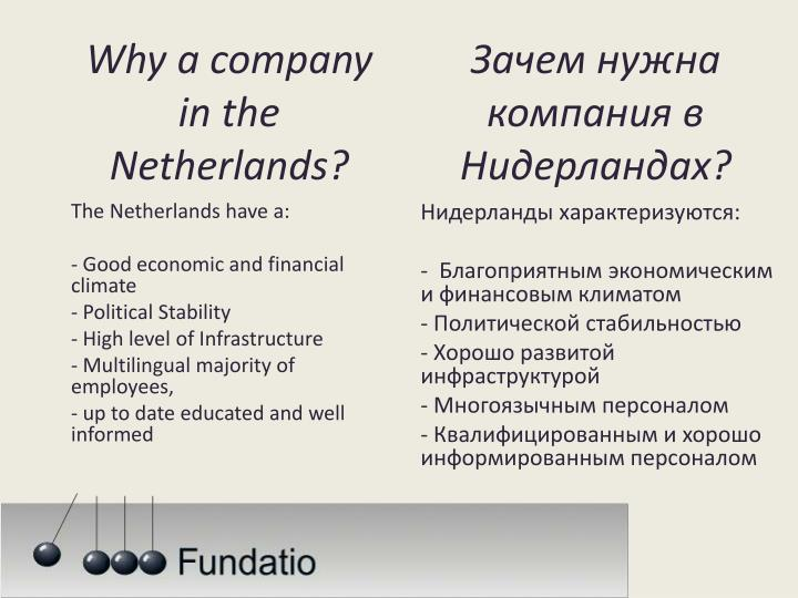 Why a company in the netherlands