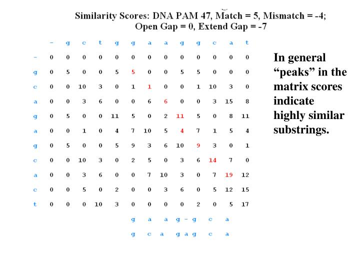 "In general ""peaks"" in the matrix scores indicate highly similar substrings."