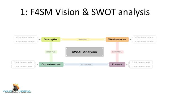 1: F4SM Vision & SWOT analysis