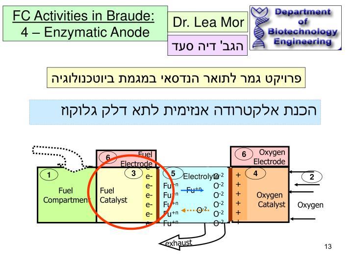 Dr. Lea Mor