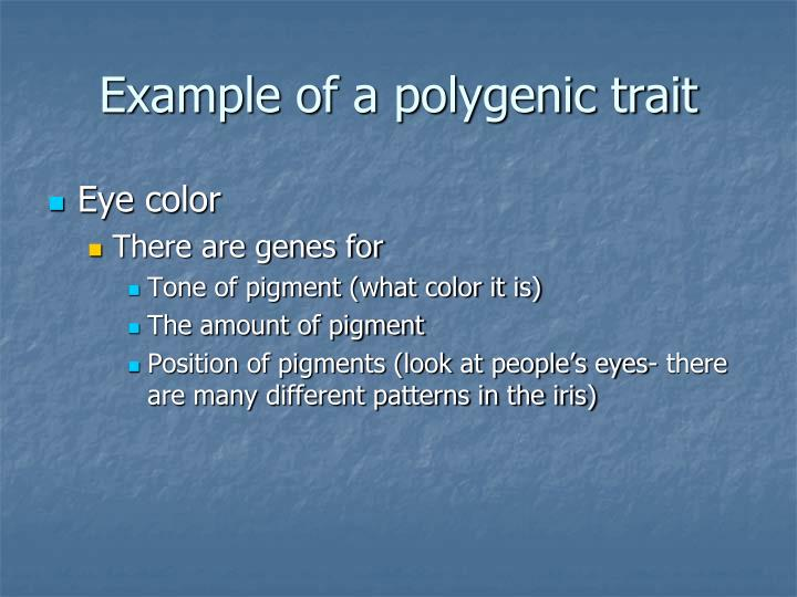 Example of a polygenic trait
