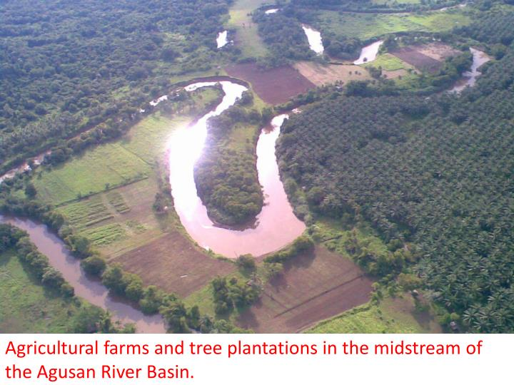 Agricultural farms and tree plantations in the midstream of