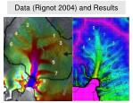 data rignot 2004 and results
