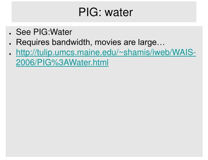 PIG: water