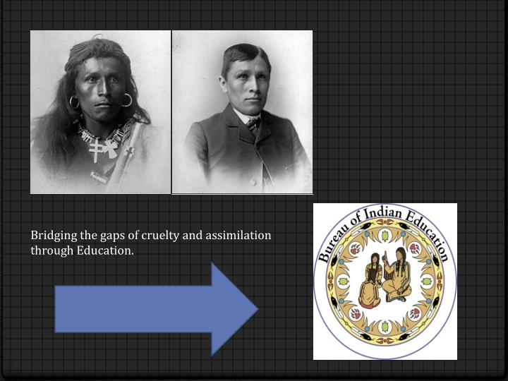 Bridging the gaps of cruelty and assimilation