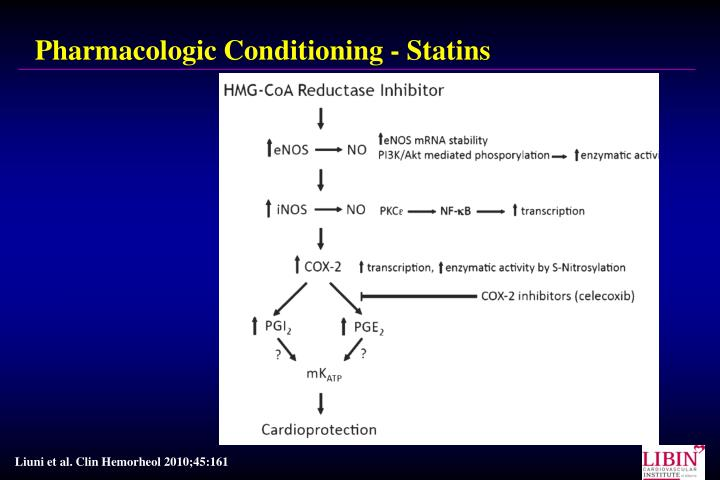 Pharmacologic Conditioning - Statins