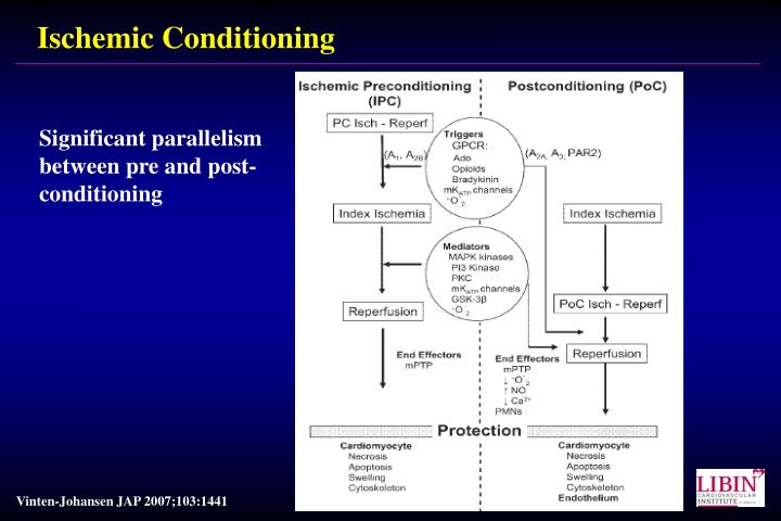Ischemic Conditioning