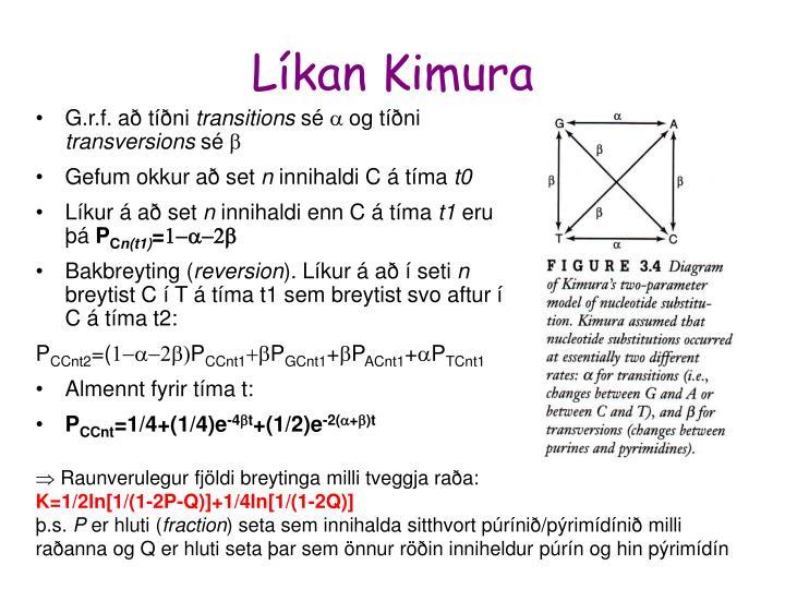 Líkan Kimura