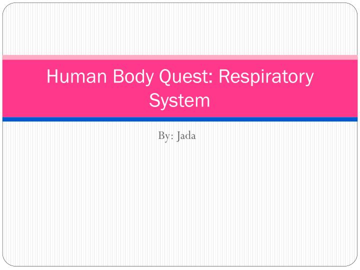 Human body quest respiratory system