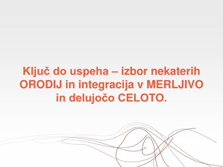 Ključ do uspeha – izbor nekaterih ORODIJ in integracija v MERLJIVO in delujočo CELOTO.