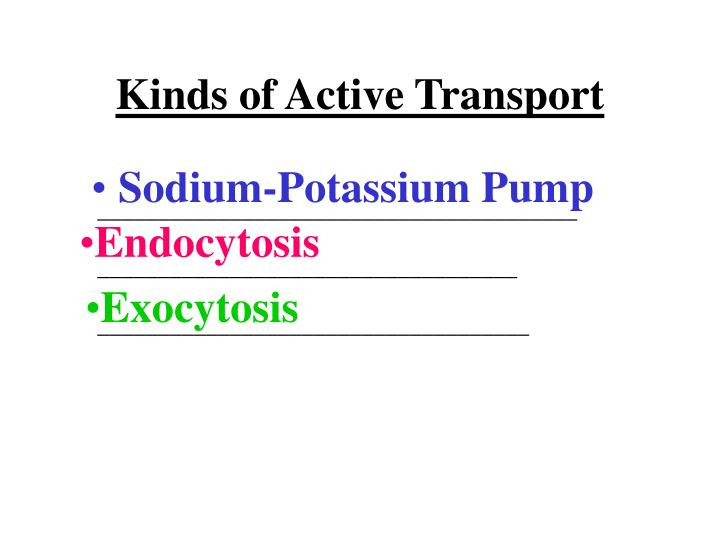 Kinds of Active Transport