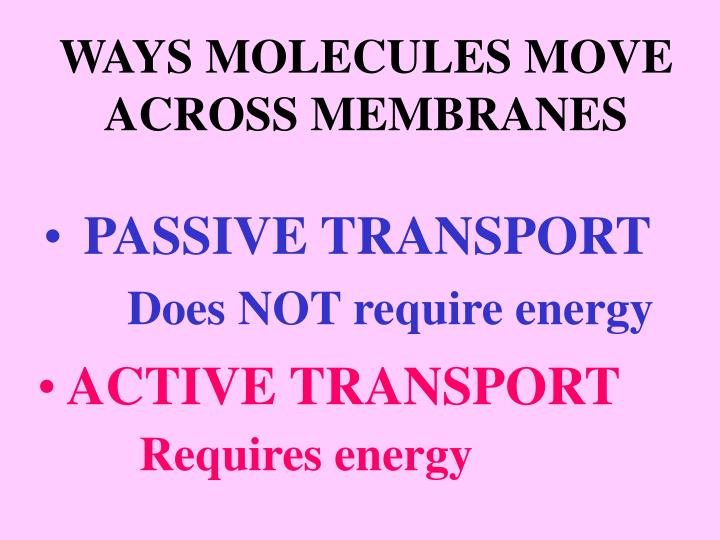WAYS MOLECULES MOVE ACROSS MEMBRANES