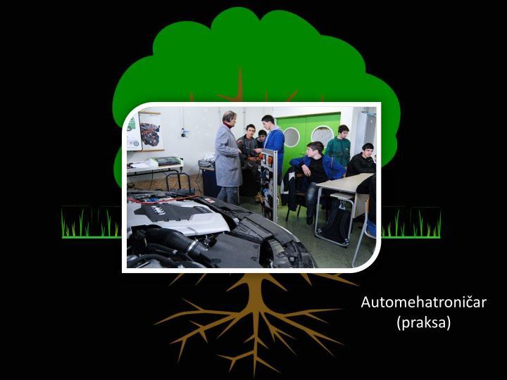 Automehatroničar (praksa)