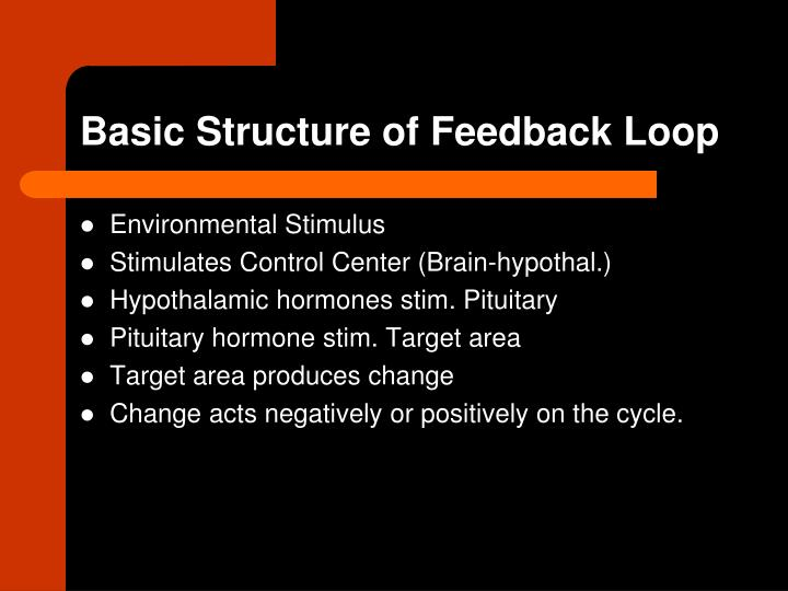 Basic Structure of Feedback Loop