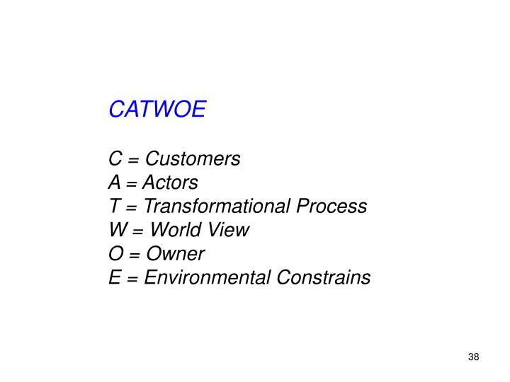 CATWOE