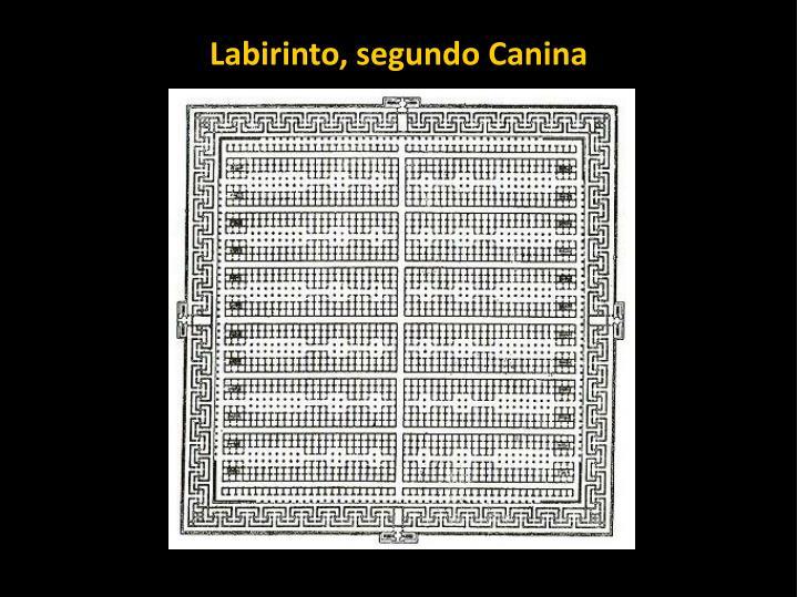 Labirinto, segundo Canina