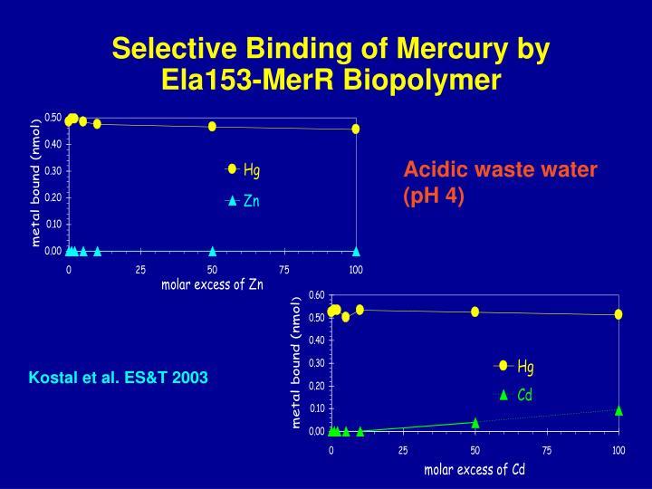 Selective Binding of Mercury by