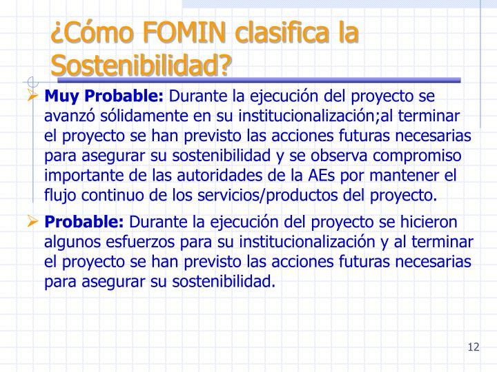 ¿Cómo FOMIN clasifica la Sostenibilidad?