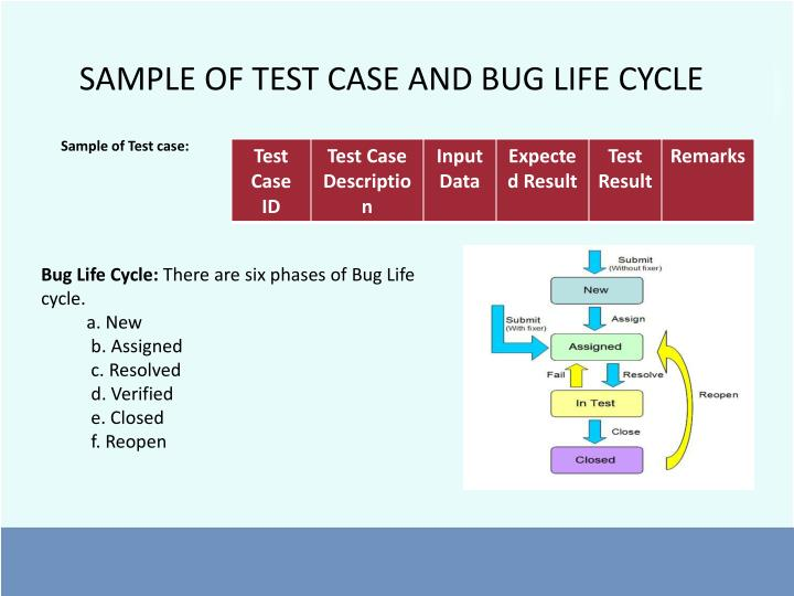 SAMPLE OF TEST CASE AND BUG LIFE CYCLE
