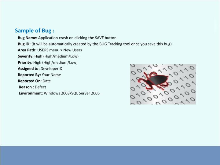 Sample of Bug :