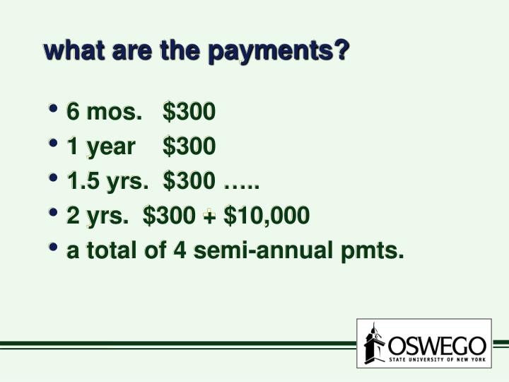 what are the payments?