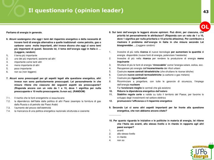 Il questionario (opinion leader)