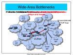 wide area bottlenecks