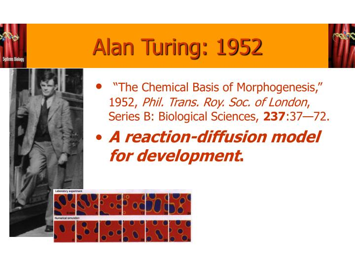 Alan Turing: 1952