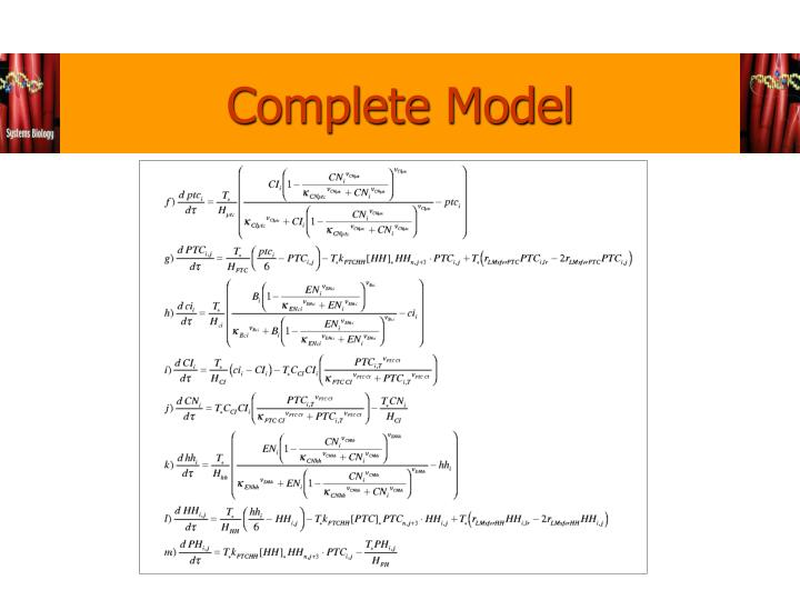 Complete Model