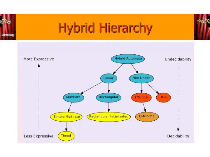 Hybrid Hierarchy