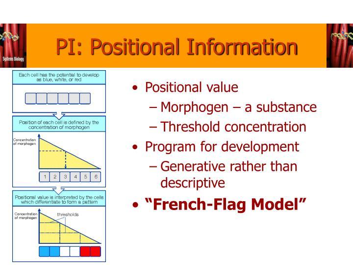 PI: Positional Information