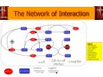 the network of interaction