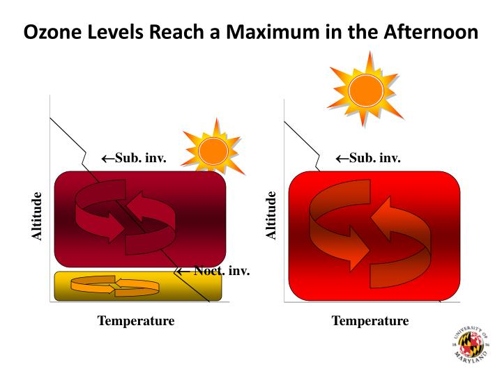 Ozone Levels Reach a Maximum in the Afternoon