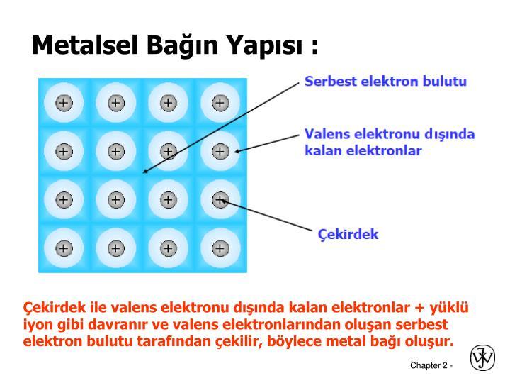 Metalsel Bağın Yapısı :