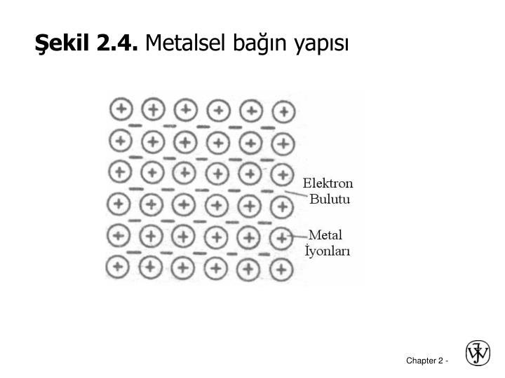 Şekil 2.4.