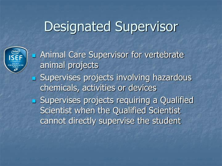Designated Supervisor